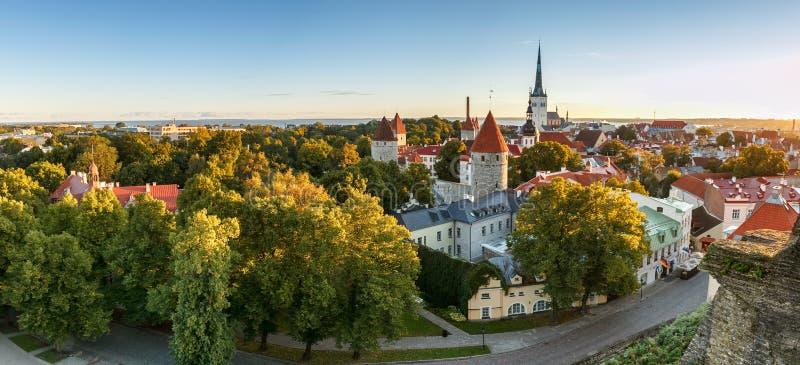 Orizzonte di Tallinn, Estonia immagini stock