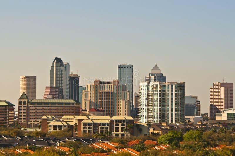 Orizzonte di Tampa, Florida immagine stock libera da diritti