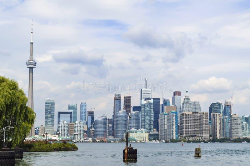 Orizzonte di Toronto - Ontario - Canada immagine stock libera da diritti