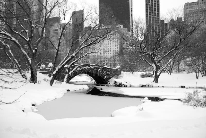 Orizzonte e Central Park di New York dopo la tempesta della neve fotografia stock