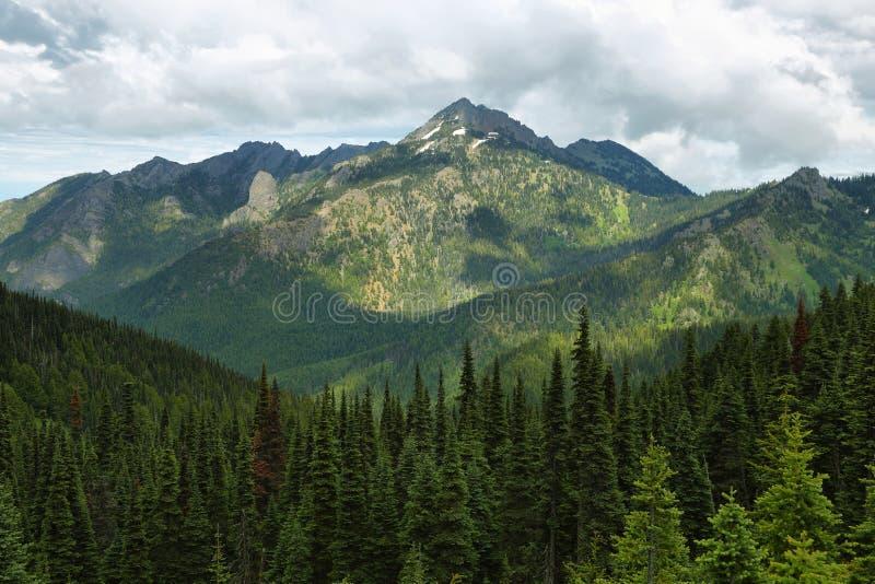 Orkan Ridge av den olympiska nationalparken arkivbilder
