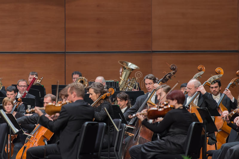 Orkester för Wien radiosymfoni royaltyfria bilder
