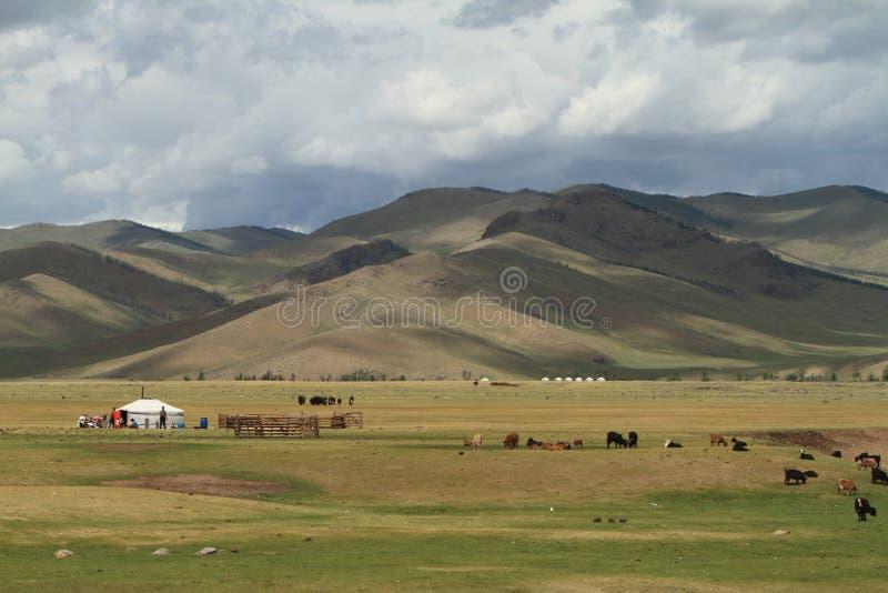 Orkhon谷国家公园蒙古 免版税库存照片