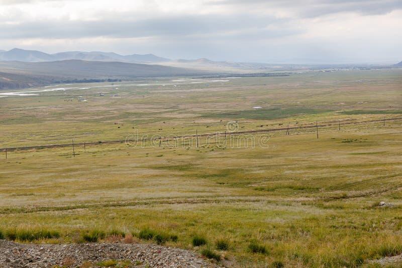 Orkhon谷蒙古风景  库存图片