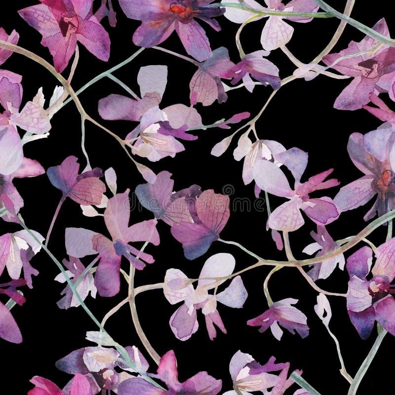 Orkidér som är purpurfärgade på sömlös modell för svart bakgrund royaltyfri illustrationer