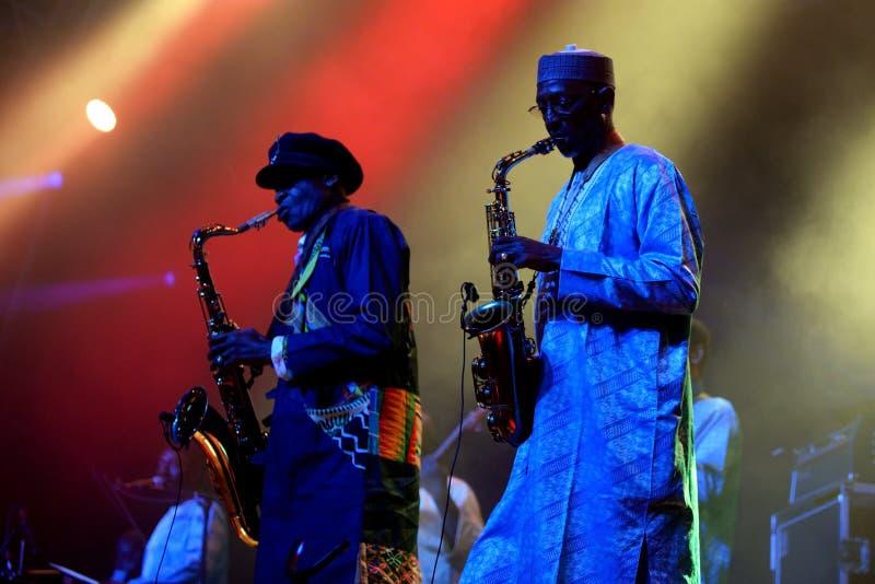 Orkiestra baobabu Karaiby fuzi zespół wykonuje w koncercie przy Primavera dźwiękiem 2016 fotografia stock