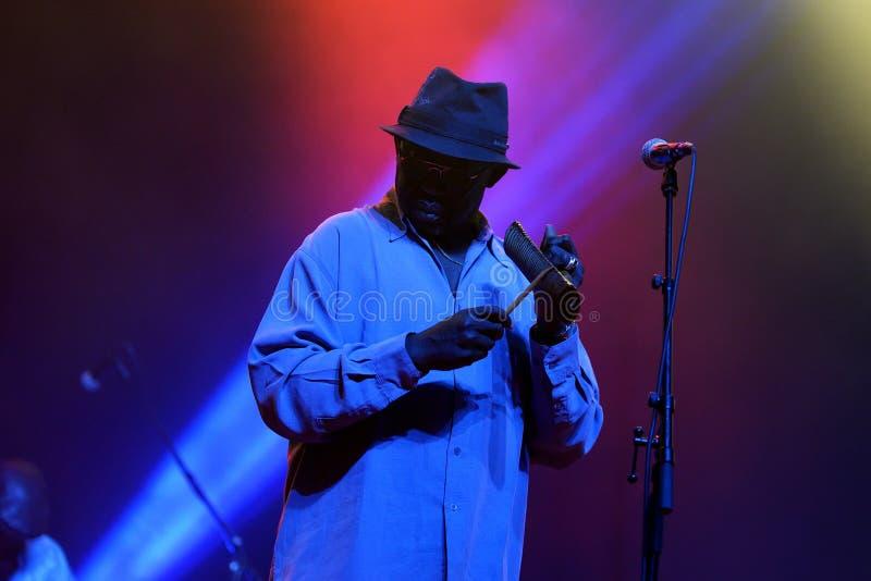 Orkiestra baobabu Karaiby fuzi zespół wykonuje w koncercie przy Primavera dźwiękiem 2016 obrazy royalty free