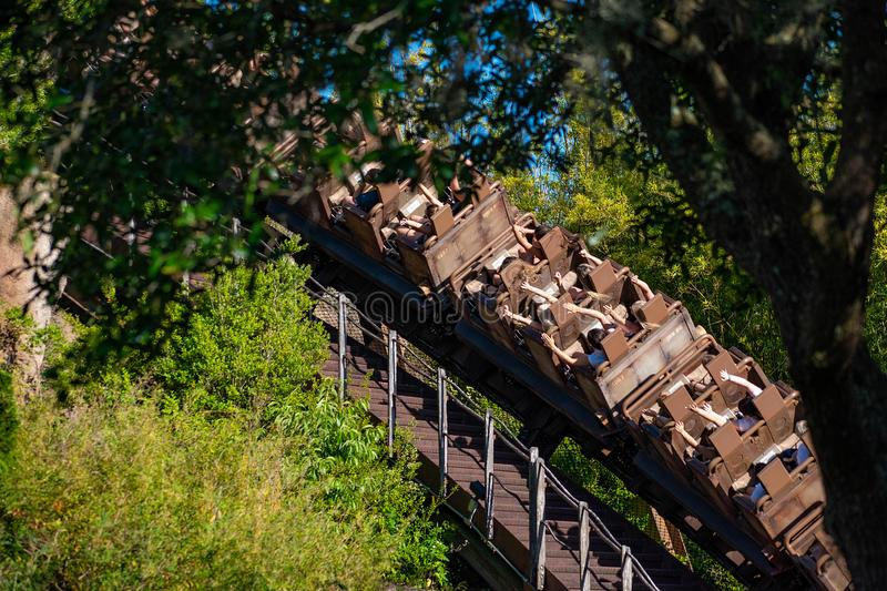 Excited people enjoying Expedition Everest rollercoaster in Animal Kingdom at Walt Disney World  35 stock image