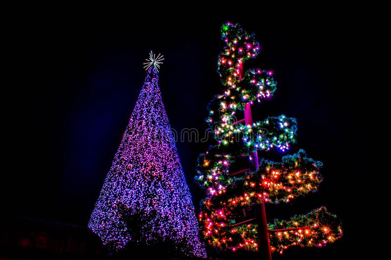 Top view of colorful Christmas trees at Seaworld 414. Orlando, Florida. December 30, 2019. Top view of colorful Christmas trees at Seaworld 414 royalty free stock photo