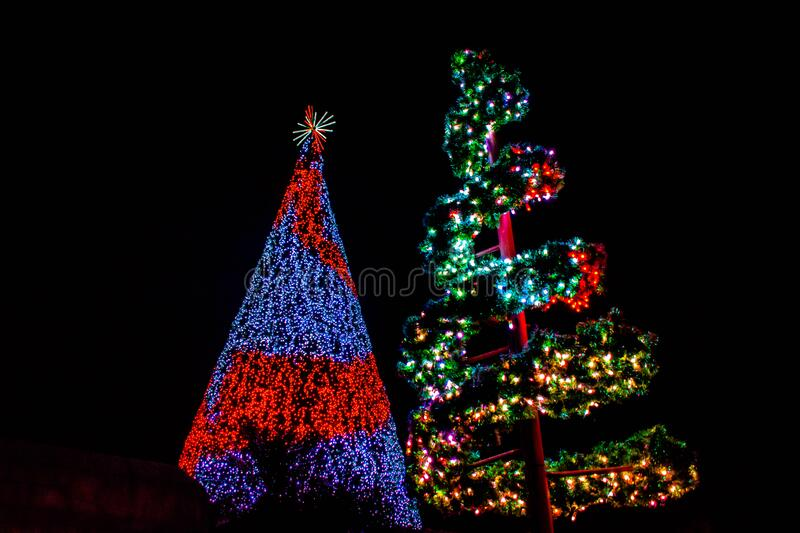 Top view of colorful Christmas trees at Seaworld 415. Orlando, Florida. December 30, 2019. Top view of colorful Christmas trees at Seaworld 415 royalty free stock photos