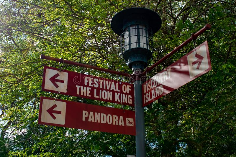 Streetlight and Festival of The Lion King sign in Animal Kingdom . royalty free stock image