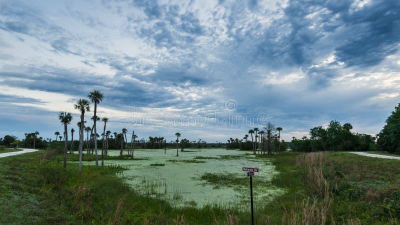 Orlando Wetlands imagenes de archivo