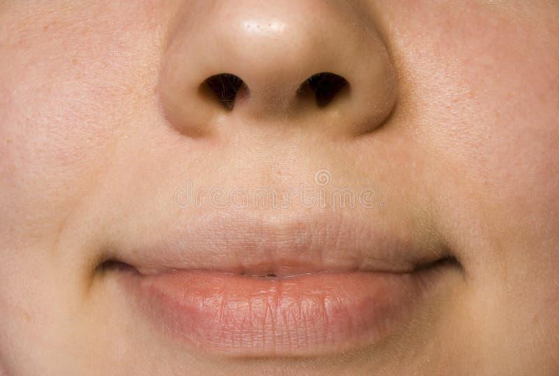 Download Orli della bocca immagine stock. Immagine di mancanza, sorriso - 214979