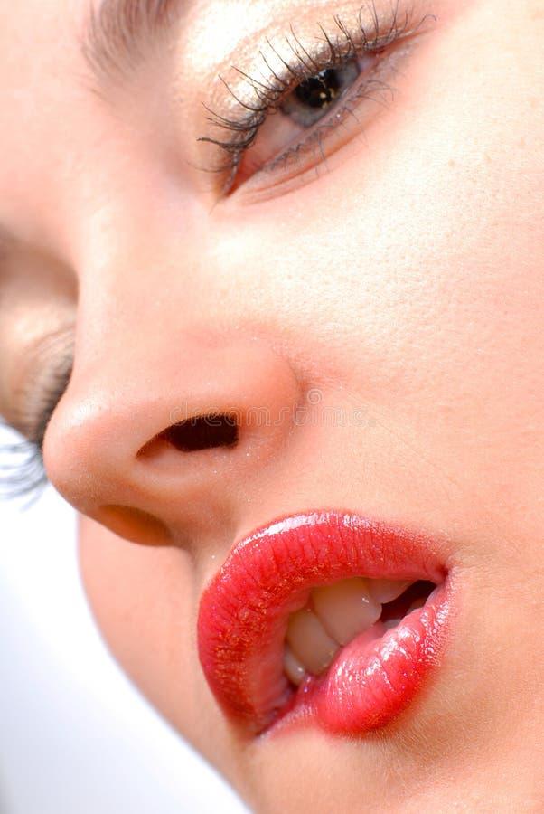 Download Orli sexy fotografia stock. Immagine di lucido, fascino - 3890932