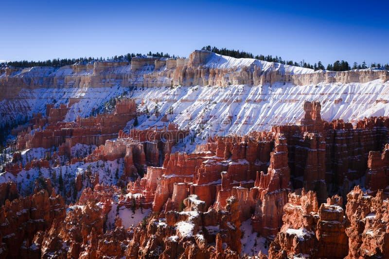 Orlo della neve del canyon di Bryce fotografie stock libere da diritti
