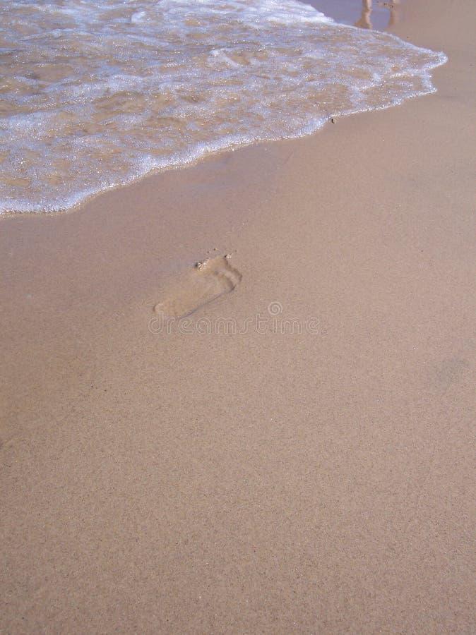 Download Orma Che Attende Sbiaditura Immagine Stock - Immagine di oceano, sabbioso: 211733