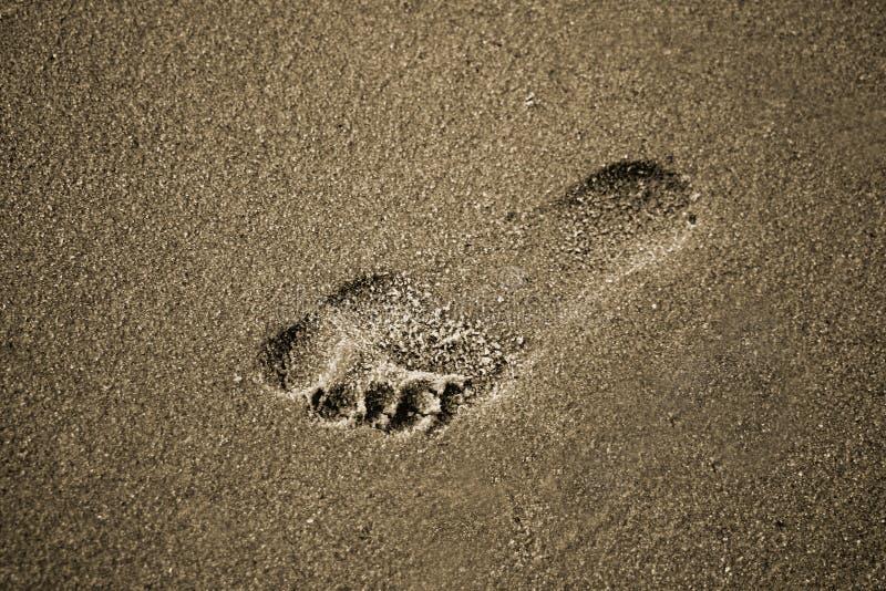 Download Orma nella sabbia immagine stock. Immagine di ricreazione - 205585