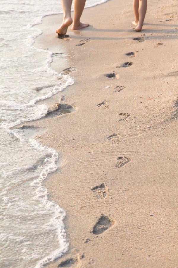Orma sulla spiaggia immagine stock