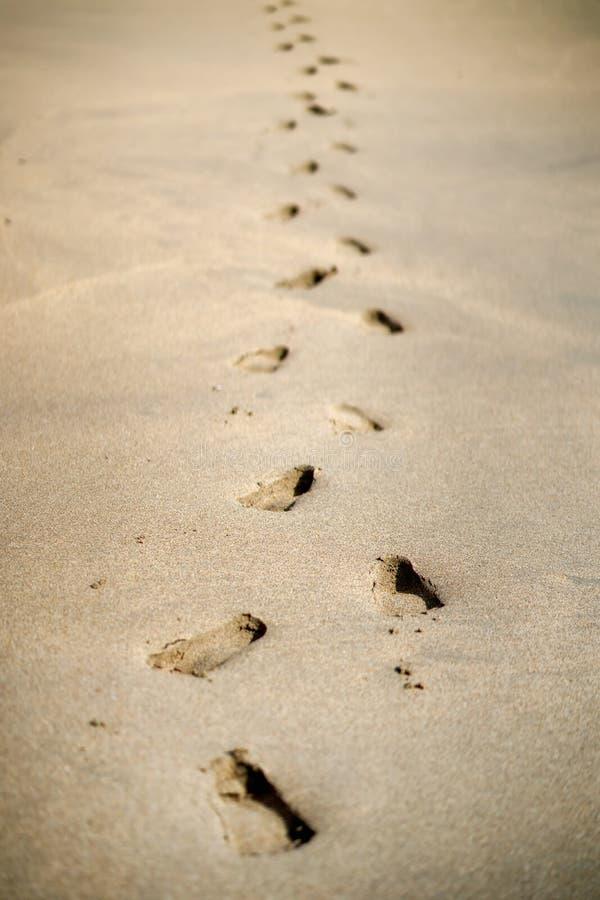 Orme che camminano sulle spiagge dorate sul da soleggiato fotografia stock