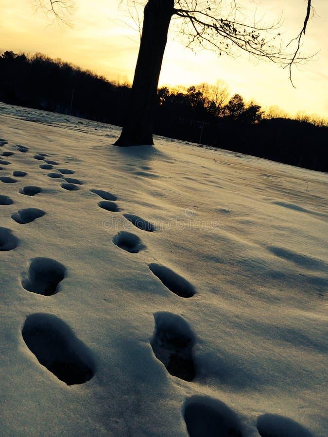 Orme di Snowy immagine stock libera da diritti