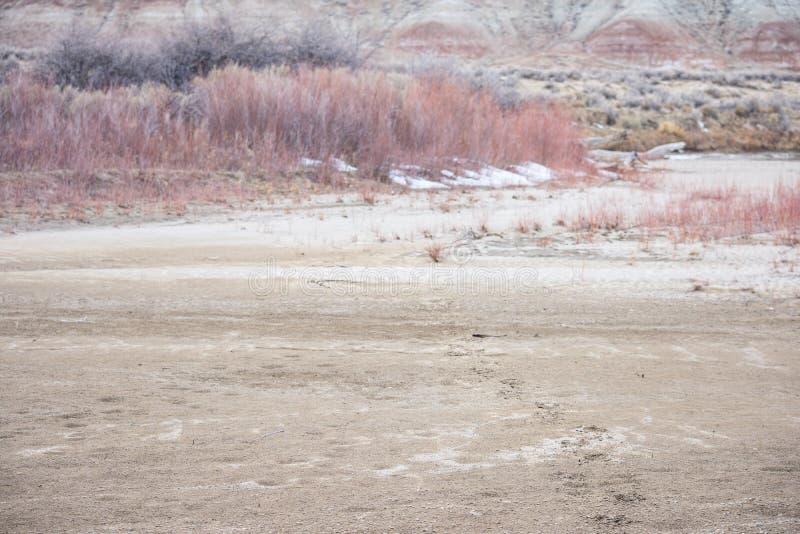 Orme in sabbia sulla spiaggia fotografia stock libera da diritti