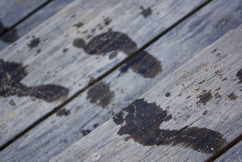 Orme sui punti di legno del club della spiaggia immagine stock libera da diritti
