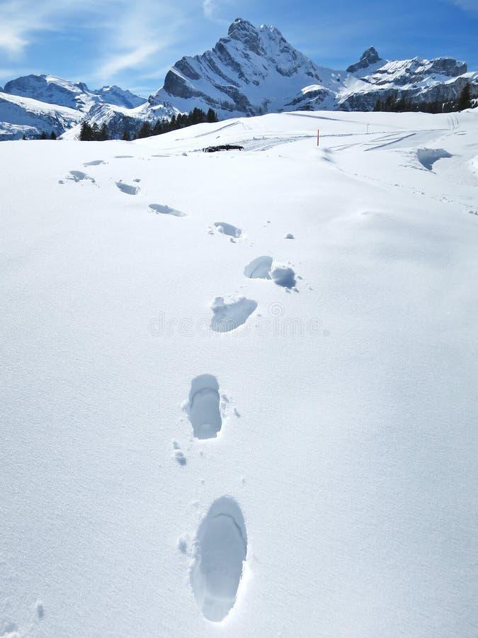 Orme sulla neve immagine stock immagine di piede for Cabina di montagna grande orso