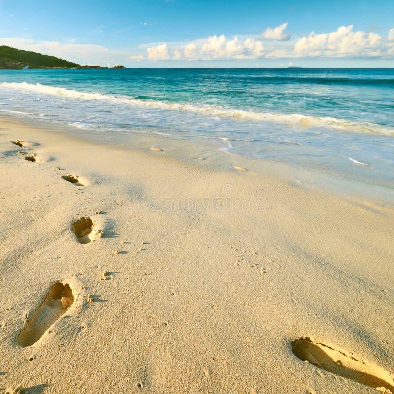 Orme sulla sabbia alla bella spiaggia fotografia stock libera da diritti