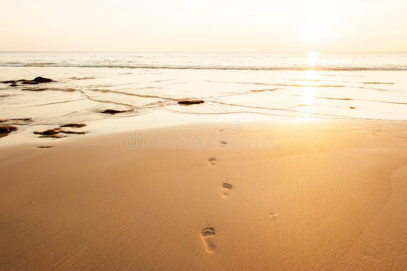 Orme umane sulla spiaggia di sabbia dorata al crepuscolo fotografie stock