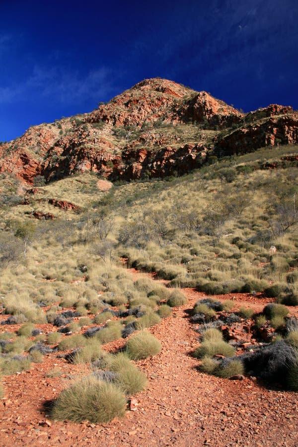 Ormiston Gorge, Australia royalty free stock photography