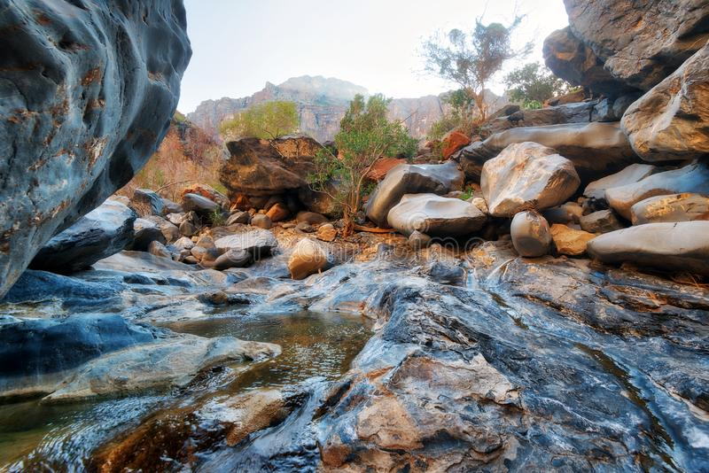 Ormklyftakanjon i Oman arkivfoto