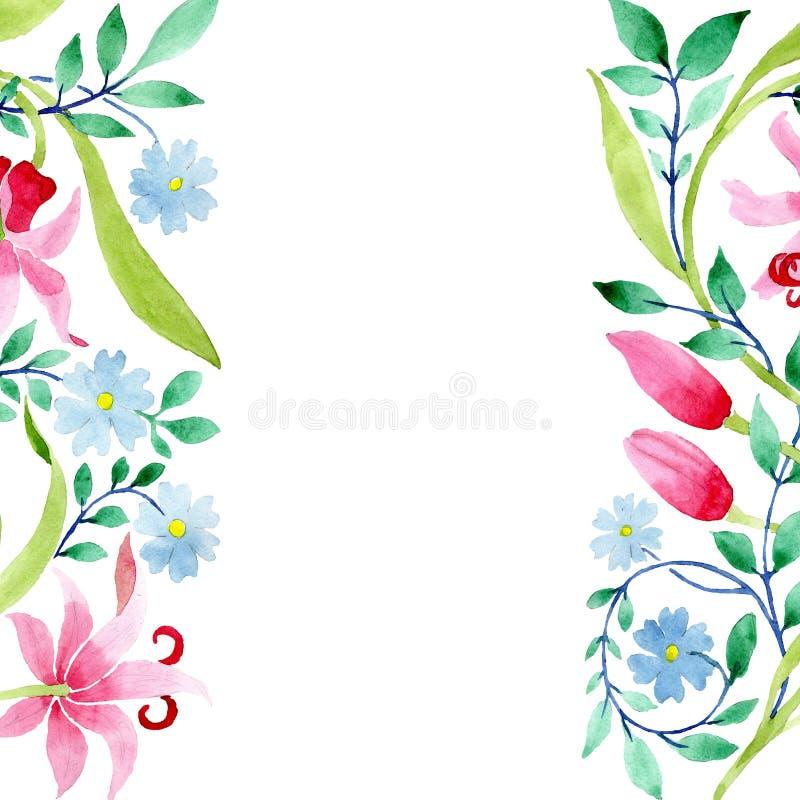 Ornament menchie i błękitni kwieciści botaniczni kwiaty Akwareli tła ilustracji set Ramowy rabatowy ornamentu kwadrat ilustracja wektor