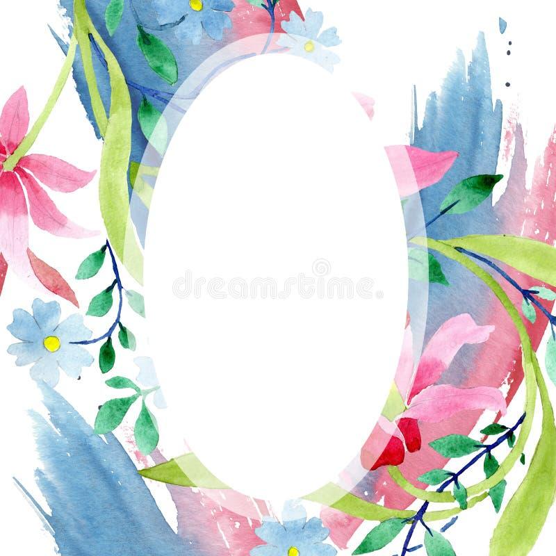 Ornament menchie i błękitni kwieciści botaniczni kwiaty Akwareli tła ilustracji set Ramowy rabatowy ornamentu kwadrat ilustracji