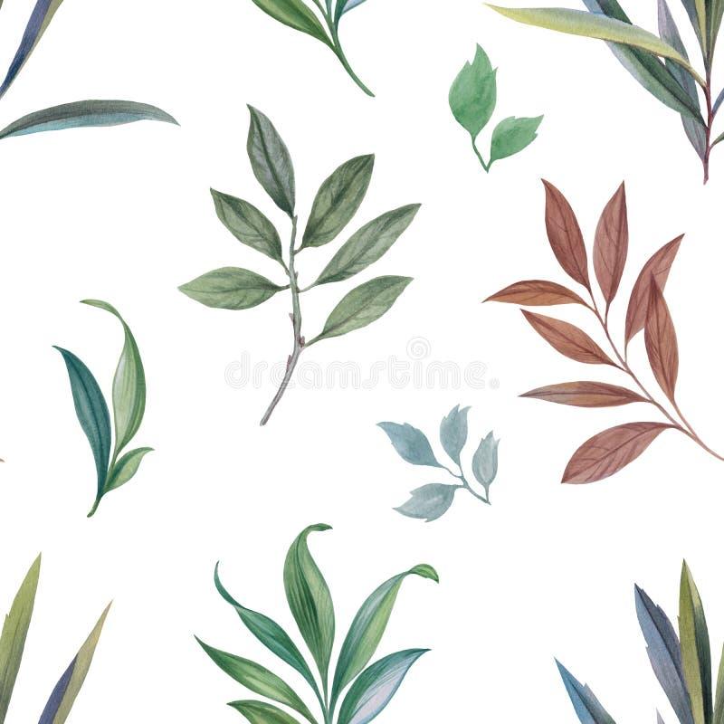 Ornament od liści i gałąź ilustracji