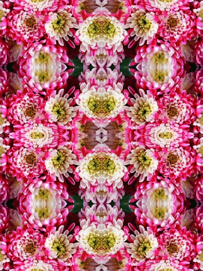 Ornament van bloemenasters stock afbeeldingen