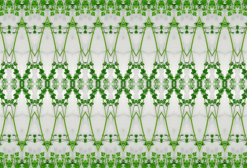Ornament of green leaves in ice. royalty free stock image