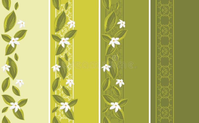 Ornamentacyjne granicy z białymi kwiatami royalty ilustracja