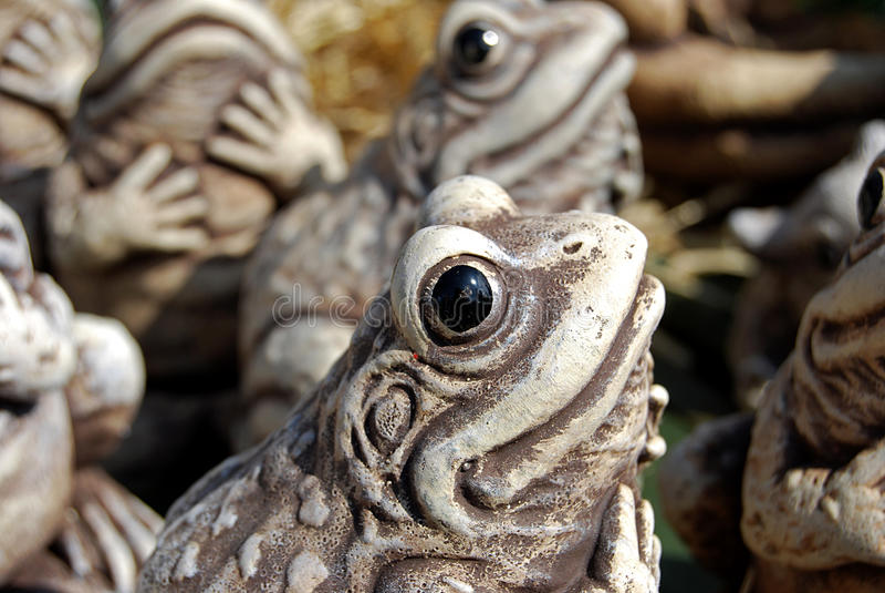 ornamental лягушки стоковое фото rf