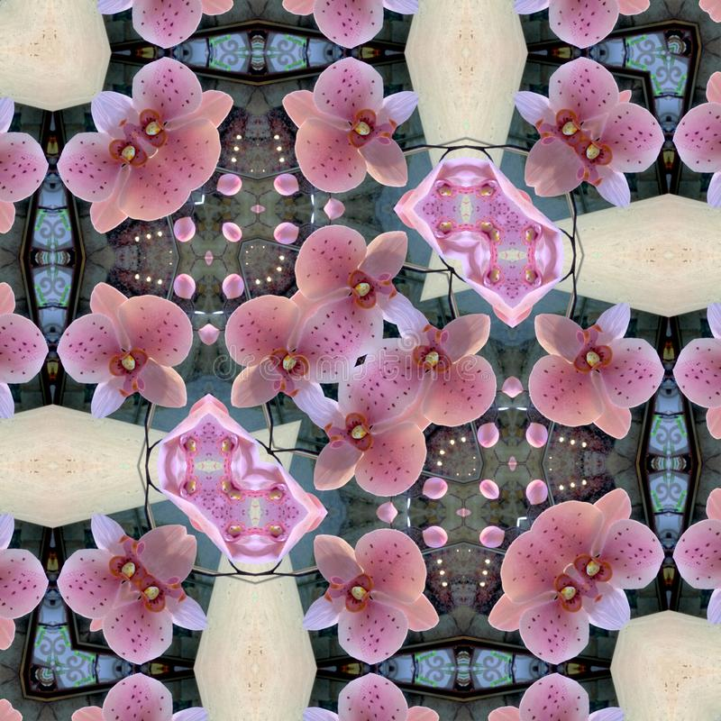 Ornamental FLORAL lace pattern. Orchid royalty free stock image