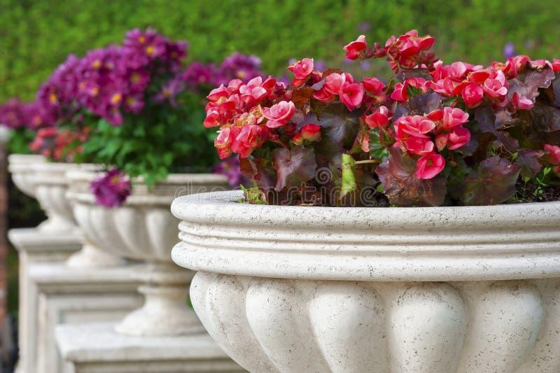 Ornamental Garden royalty free stock photography