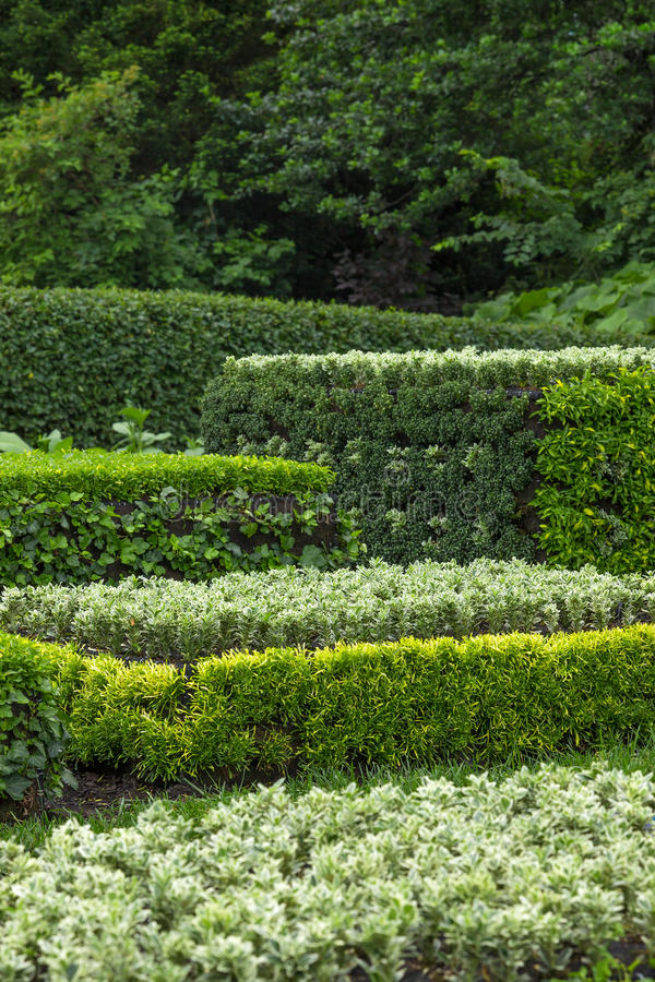 Download Ornamental Garden Stock Photos - Image: 33996713