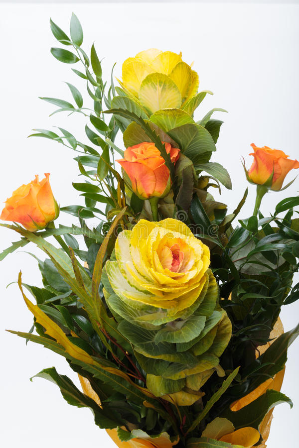 Ornamental kale. With yellow, orange, and green leaves (Brassica oleracea royalty free stock photo