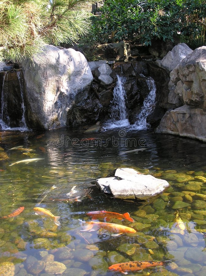 Ornamental Pond stock photography