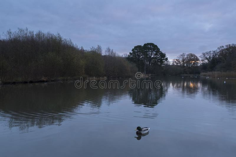Download The Ornamental Pond, Southampton Common, On A Cloudy Morning Stock Photo - Image of ornamental, water: 105343076