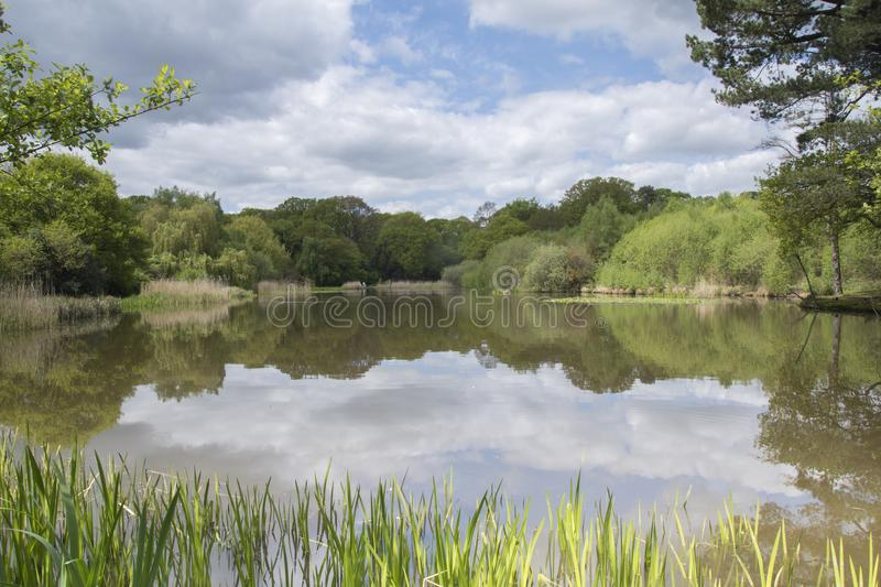 Download The Ornamental Pond, Southampton Common Stock Image - Image of common, pond: 115969583