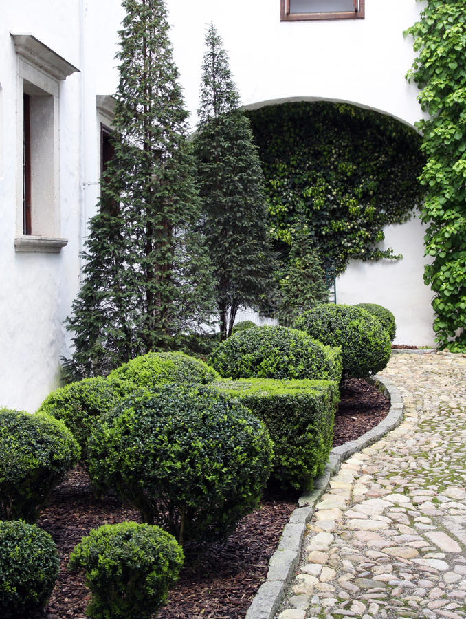 Ornamental shrubs and conifers. Smaller ornamental garden beds in the shade, with ornamental shrubs and conifers. In the foreground are sheared box trees royalty free stock photography