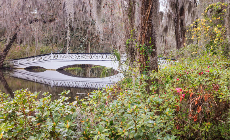 Ornamental Bridge Reflection South Carolina SC Stock Photo