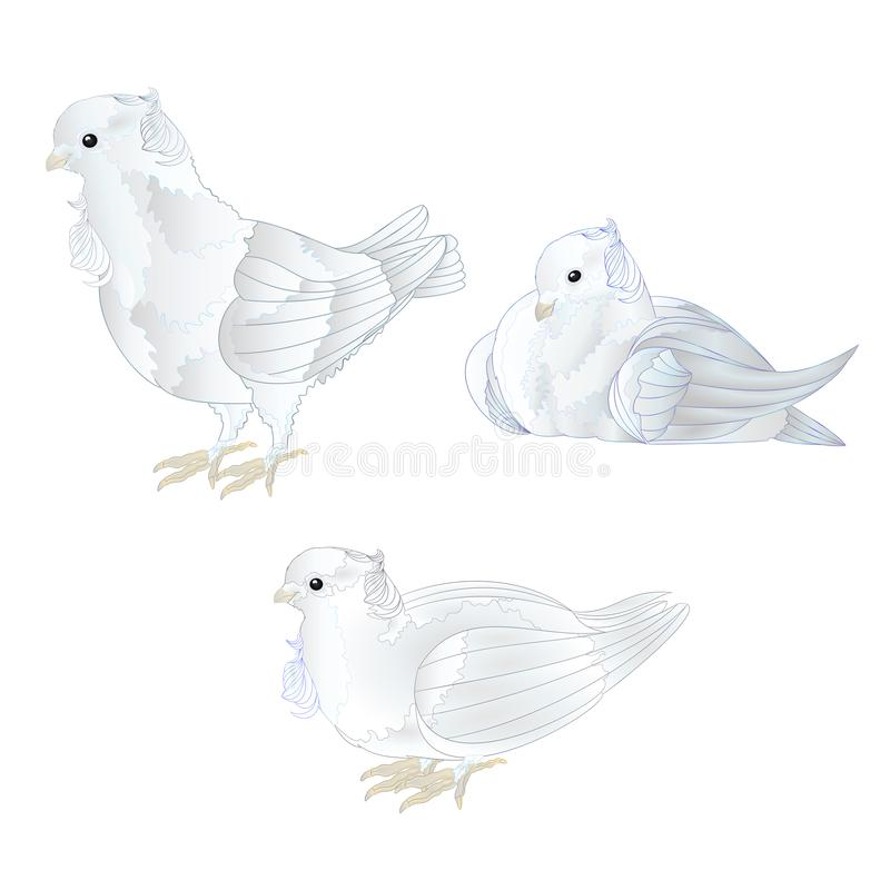Ornamental white doves cute small birds set on a white background vintage vector illustration editable vector illustration