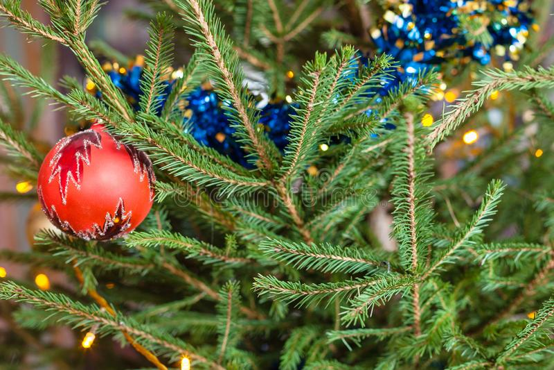 Ornamenten op groene takjes van levende Kerstboom stock foto's