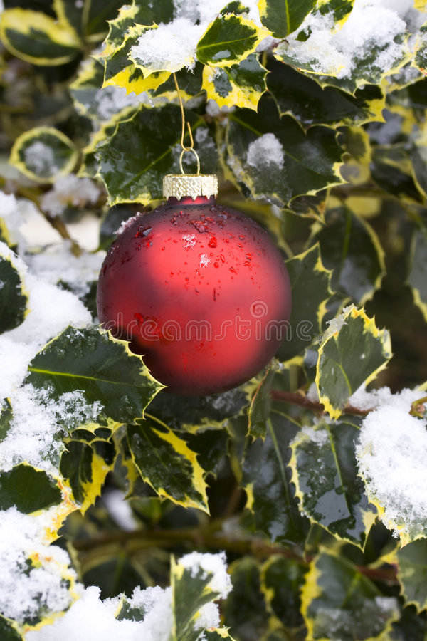 Download Ornamenti di festa immagine stock. Immagine di celebri - 7313677
